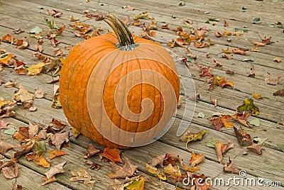 Pumpkin on a wood deck