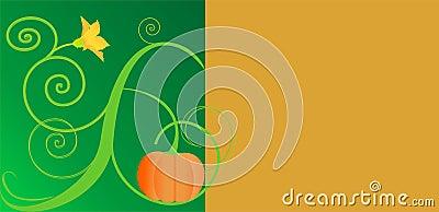 Pumpkinbloom