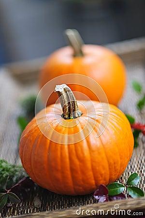 Free Pumpkins Royalty Free Stock Image - 21748876