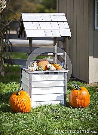 Free Pumpkins Stock Photo - 27072220