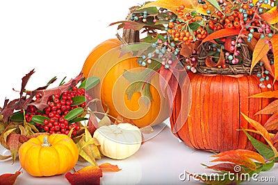 Pumpkins and fall beries
