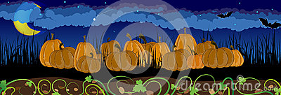 Pumpkins in the grass
