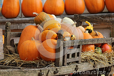 Pumpkins in old wooden cart.