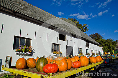 Pumpkins at a trailer Editorial Stock Image