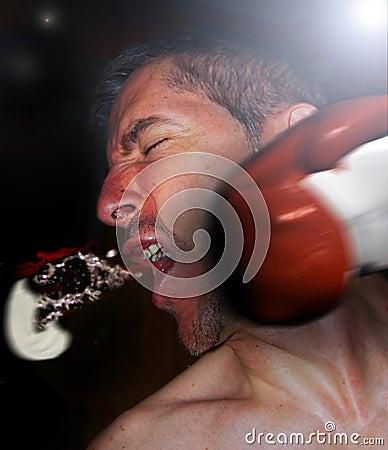 Free Punch Impact Royalty Free Stock Image - 15531546