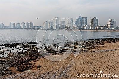 Punta del Este Beach Uruguay