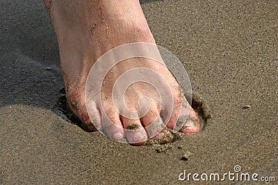 Puntas en arena
