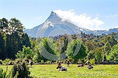 Puntiagudo Volcano, Chile