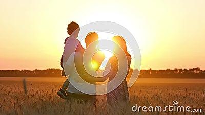 Punto del padre e madre il bambino all'orizzonte in un giacimento di grano Famiglia felice al tramonto Agricoltura, relazioni video d archivio