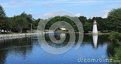 Punto di vista di Wellington Park in Simcoe, Canada 4K archivi video