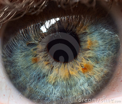 Pupil of human eye