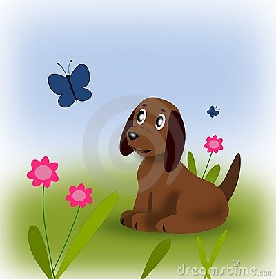 Puppy and Butterfly.
