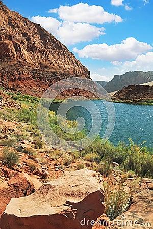 Pure emerald Colorado River