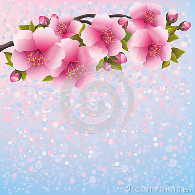 Purple background with sakura blossom - Japanese c