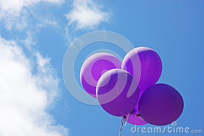 Purple balloons floating in blue sky