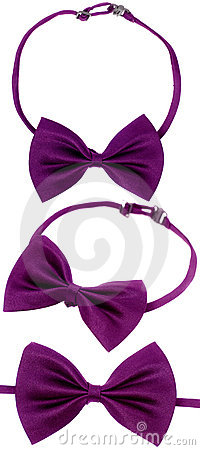 Free Purple Bow-tie Royalty Free Stock Photos - 20254928