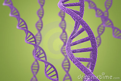 Purple DNA helices on a green background