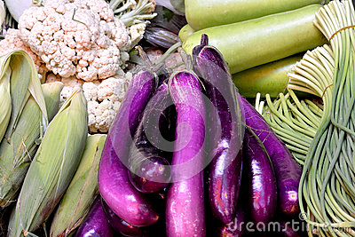 Purple eggplant and various vegetable