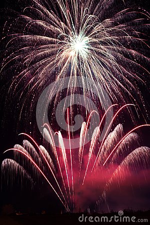 Free Purple Fireworks Display Stock Image - 113700871