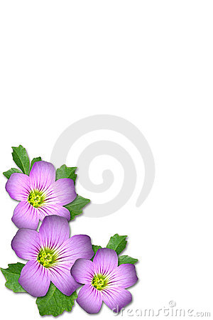 Free Purple Flower Royalty Free Stock Photo - 5313965