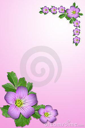 Free Purple Flower Royalty Free Stock Photo - 5315365