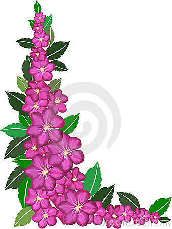 Purple Flower Border Royalty Free Stock Photos Image