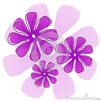 Fresh Flower Delivery on Of An Azalea Flower Jersey Flowers By Post Patterns In Petals Flowers