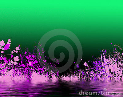 Purple flowers by water