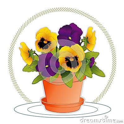 Purple & Gold Pansies in Flowerpot