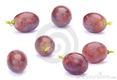 Purple grape