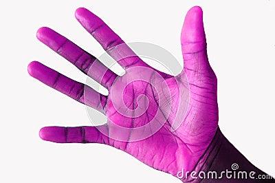 Purple Handed Orignal