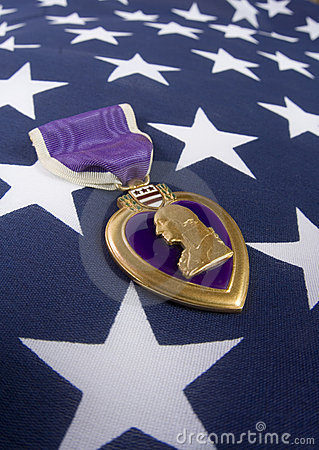 Free Purple Heart (memorial Day Series) Royalty Free Stock Photography - 741787