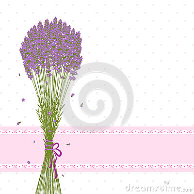 Purple Lavender Flower Greeting Card