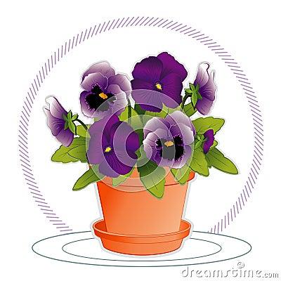 Purple & Lavender Pansies in Flowerpot
