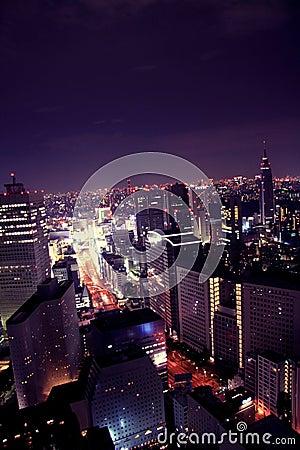 Purple night