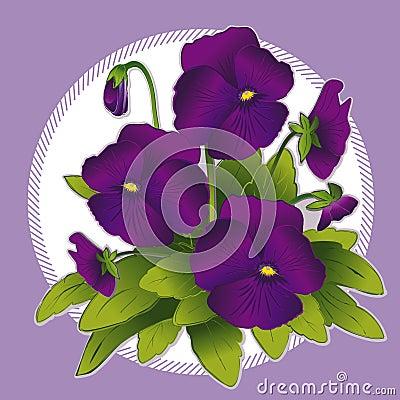 Free Purple Pansies Royalty Free Stock Photos - 5617048