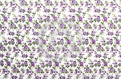 Purple Rose Fabric background, Fragment of colorfu