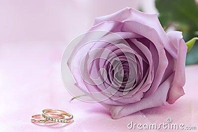Purple rose and wedding rings