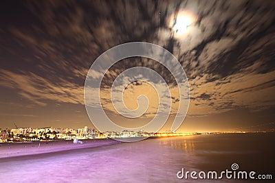 Purple Seas