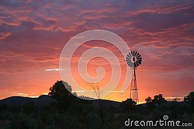 Purple sky with windmill.