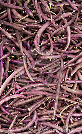 Purple string beans on display