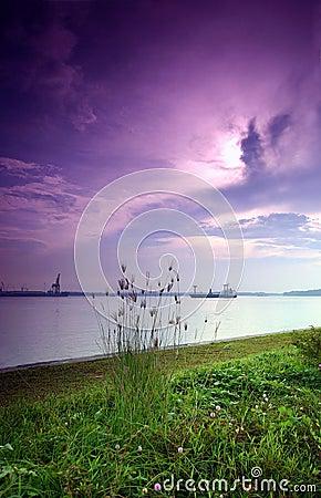 Free Purple Sunrise, Seaside Stock Photography - 4973962