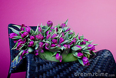 Purple tulips on black chair with green cushion