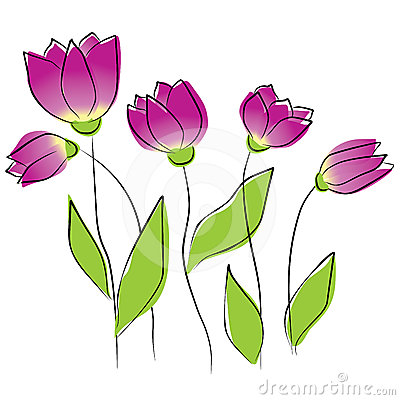 Purple tulips, vector illustration