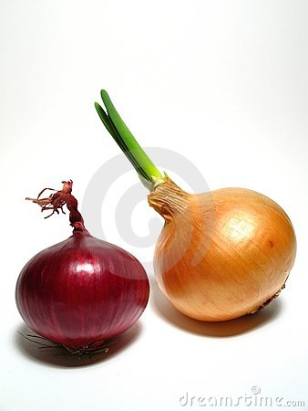 Purple and yellow onion