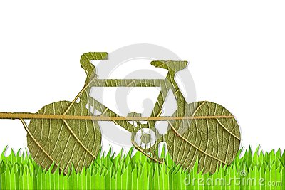 Pushbike from green leave