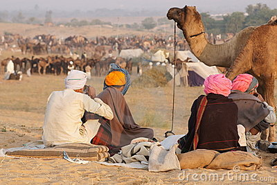 Pushkar Camel Fair Editorial Photography