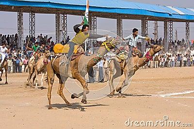 Pushkar Camel Mela (Pushkar Camel Fair) Editorial Photography