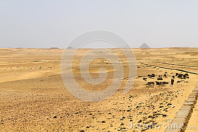 Pyramid field at Saqqara