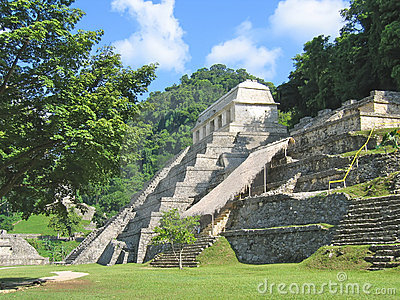 Pyramid maya in the jungle